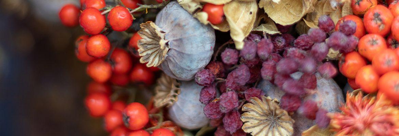 Genießertermine im Herbst